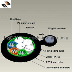 Figure Eight Optical Fiber Cable (GYFTC8S) pictures & photos