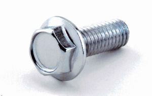 Hexagon Head Bolt for Sale pictures & photos