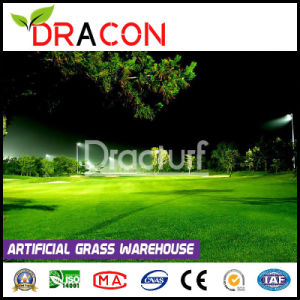 Putting Green Artificial Plastic Grass Mat (L-2011) pictures & photos