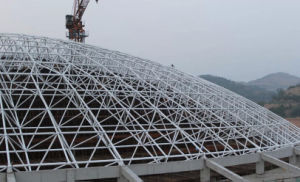 Steel Grid Structure for Large Span Steel Structure Building pictures & photos