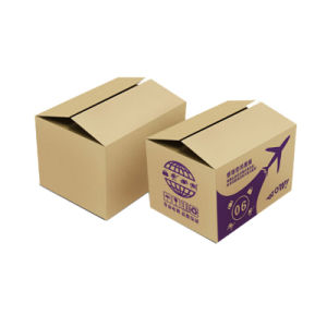 Custom Corrugated Folding Carton Boxes (FP7021) pictures & photos
