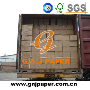 Top Quality A4 Size Special Bible Paper in Carton Packing pictures & photos