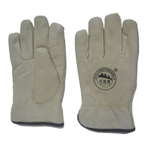 Pig Skin Full Lining Warmer Winter Working Driving Gloves pictures & photos