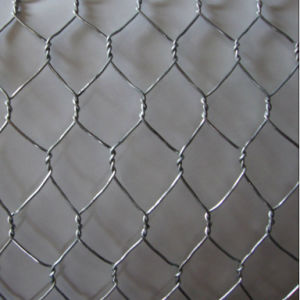 "1"" Hot Dipped Galvanized Hexagonal Wire Mesh pictures & photos"
