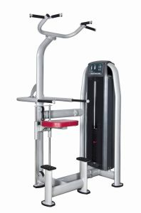 DIP & Chin Assist Commercial Fitness/Gym Equipment with SGS/CE pictures & photos