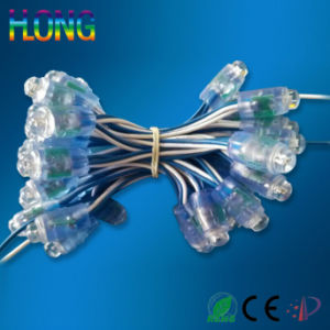 Waterproof Outdoor Lighting Light Exposure Colorful String Light pictures & photos