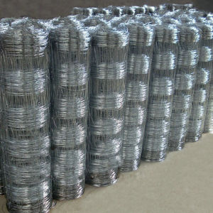 Hot-Dipped Galvanized Field Fence (EFF-05) pictures & photos