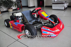 Go Karting for Kid pictures & photos