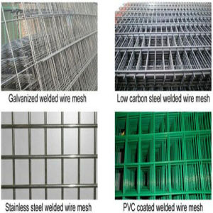 2X2 Electric Galvanized Welded Wire Mesh for Fence Panel pictures & photos