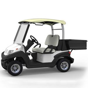 2 Seats High Quality Golf Cart with EU Certificate Simo202ah