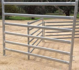 5foot*10foot Cattle Corral Panel / Horse Corral Panel / Used Livestock Panel pictures & photos