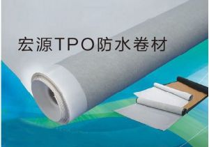 Single Ply Waterproof System--Tpo Roofing Membrane pictures & photos