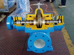 Double Suction, Split Case Pump (SA) pictures & photos