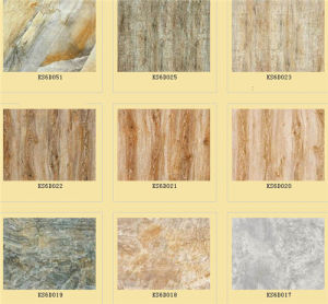 Matt Ceramic Flooring Rustic Tile (600X600mm) From Linyi Factory pictures & photos