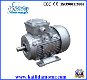 2.2kw 3hp Aluminum Three Phase Electric Motor pictures & photos