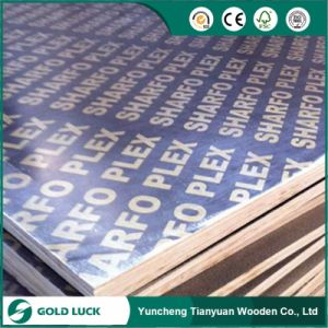 18mm Black Film Faced Plywood / Concrete Formwork / Building Material pictures & photos