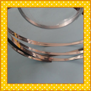 309S Narrow Stainless Steel Strip pictures & photos