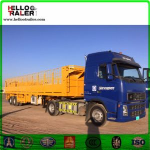 40 Feet Sidewall Cargo Box Truck Trailer Tri-Axle Cargo Semi Trailer pictures & photos