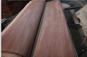 Gurjan (keruing) Plywood for Asian Market pictures & photos