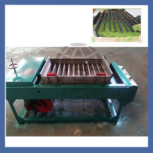 Tea Processing Machine to Make Tea Leaf Strip Machine pictures & photos
