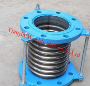 Stainless Steel Expansion Joint (WDS)