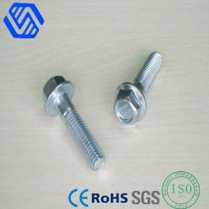 Hex Head with Flange Bolt pictures & photos