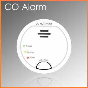 LCD Display Single Station Co Carbon Monoxide Alarms (PW-912)