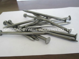 Wire Nail and Common Nails Galvanized with Q195 or Q235 Products (3/8 inch to 6 inches) pictures & photos