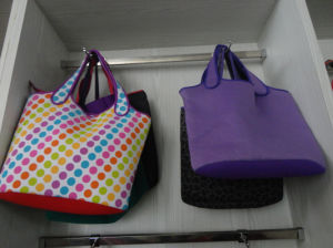 Carrying Lunch Tote Bag, Shopping Bag (QK-B-015) pictures & photos
