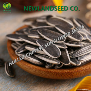 2016 Sunflower Seeds Is Hot Sale Around The World pictures & photos