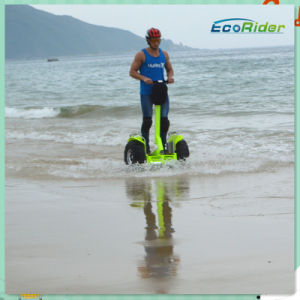 China Electric Chariot X2 New Car Motor Vehicle pictures & photos