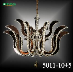Hot Sale Home Decorative Crystal Chandelier/Chandelier Pendant Lampbyzg5011-10+5 pictures & photos
