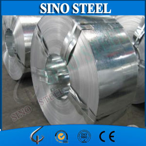 Export Galvanized Steel Strip with Export Standard Packing pictures & photos