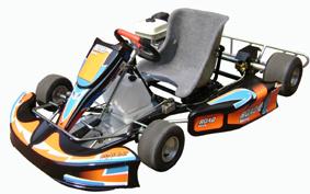 Go Kart 200CC Honda Engine 5.5HP Wet Clutch (ADP1101(W))