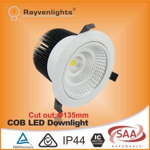 20W/35W/50W Citizen COB LED Downlight