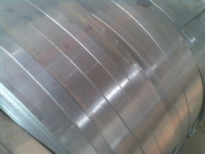 Galvanized Steel Strip on Sale (0.2mm-4mm thickness) pictures & photos