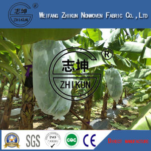 Agriculture Useing PP Nonwoven Fabric pictures & photos