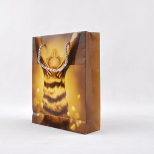 Recyclable Kraft Carrier Printing Gift Paper Bag (PG-00002)