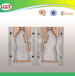 Extrusion Plastic Blowing Mould pictures & photos