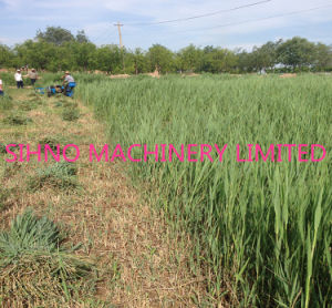 Diesel Engine Wheat and Rice Reaper Binder/Good Quality Automatic Reaper Binder/Paddy Rice Harvesting and Bundling pictures & photos