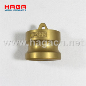Brass Dust Plug Camlcok Coupling in Type Dp pictures & photos