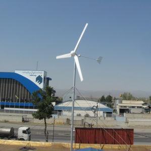 Easy Install Hawt Wind Turbine 2000W Generator