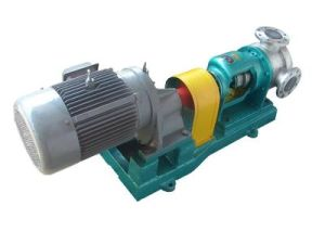 Nyp80 Stainless Steel Chemical Pump pictures & photos