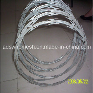 Low Price Galvanized Concertina Razor Barbed Wire (BTO) pictures & photos