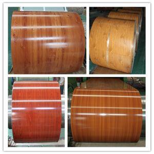 Prepainted Galvanized Steel Coil PPGI Ral Color pictures & photos