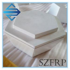 FRP Fiberglass Antenna Radome pictures & photos