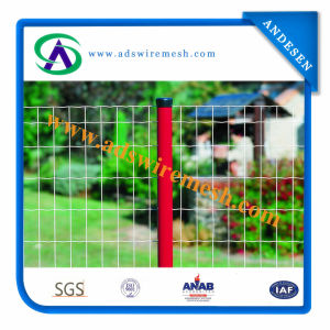 Glavanized /PVC Coated Wire Mesh Fence (ISO9001) pictures & photos