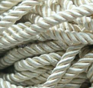 Polyester Braided Rope pictures & photos