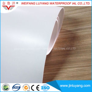 Factory Direct Supply High Quality Thermoplastic Polyolefin (TPO) Waterproof Membrane
