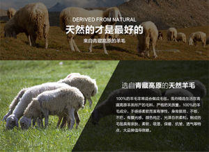 Combing/Carded Yak/Camel / Yak Cashmere Wool Raw Material/Fabric/Textile pictures & photos